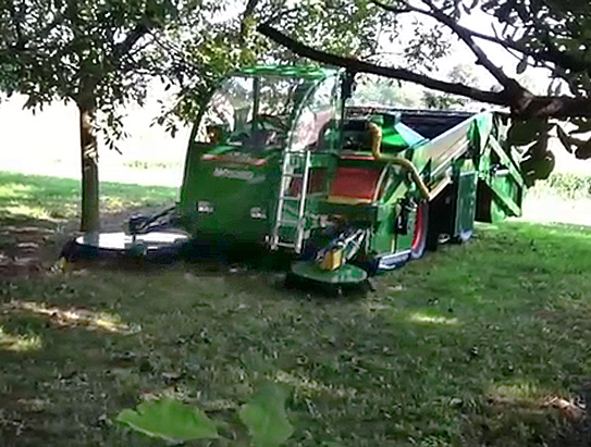 Self-propelled harvester